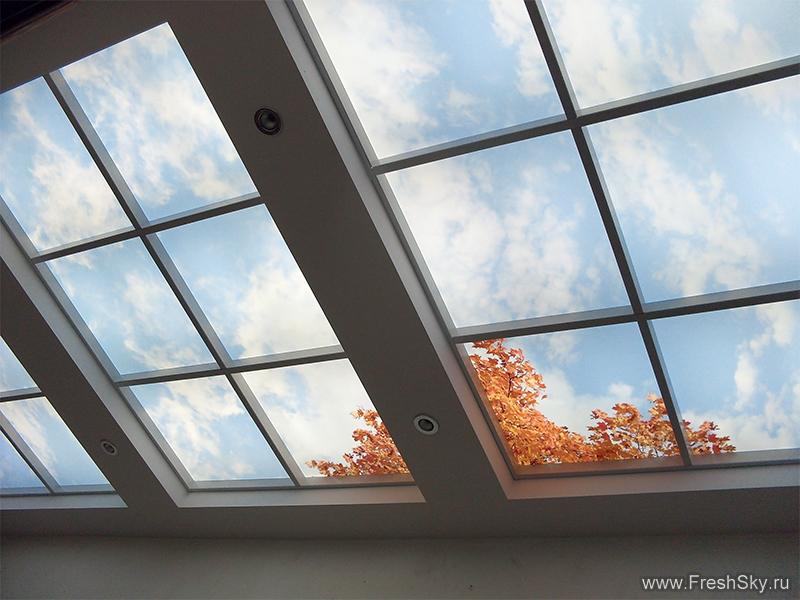 Искусственные окна в потолке.